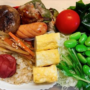 ダイエット弁当(*^▽^*)いろいろ気にしたお弁当♪