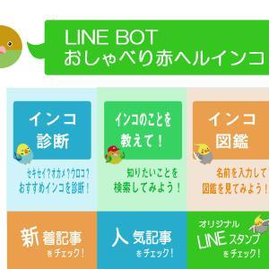 LINEボットアカウント【おしゃべり赤ヘルインコ】オープン