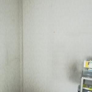 自室の壁紙お掃除したよ(少しだけどw)
