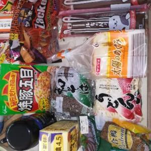 お買い物、チョコ菓子のザッキー169円
