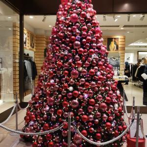 都内の華やかなクリスマスツリーで感傷的な気分