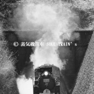 SLやまぐち号・アーカイブ 1981-1984年 その2 「田代トンネル飛び出し」