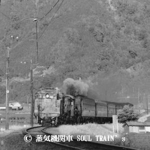 大井川鐵道 その20  「夕日に向かって」