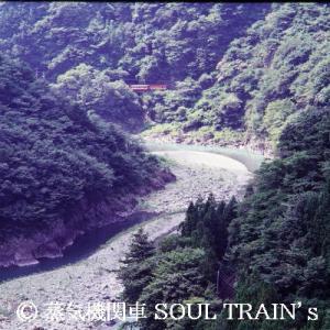 1988.8 堂平貨物駅復活の夏 5 線路が見えない・・・。