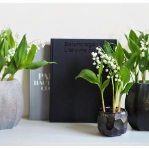 GUAXS展示販売会 & 7月お花屋さんのお知らせ。