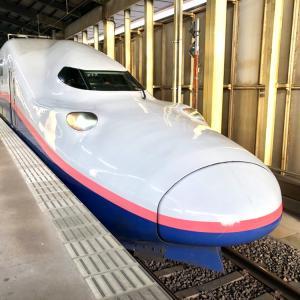 二階建て新幹線「Maxとき」で帰京。~鳴子温泉郷 中山平温泉 湯めぐり紀行~18