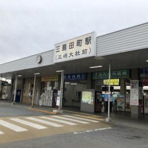 伊豆箱根鉄道と特急踊り子で帰路へ  ~2019左文字巡り~