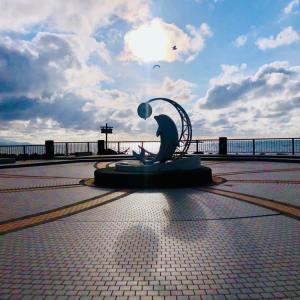 シカとイルカとノシャップ岬。/ 雪解けの北海道旅行-17