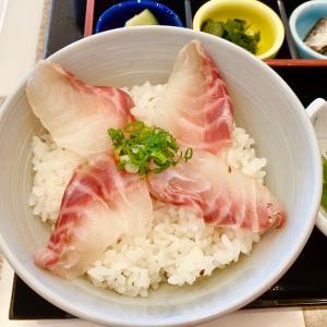 鯛飯たべて、特急「宇和海」で伊予大洲駅へ。/『バースデイきっぷ』で行く、四国一周旅行-14