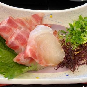 ふらっとひとり酒。郷土料理 大衆割烹「ほづみ亭」/ 愛媛県 宇和島市