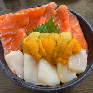 苫小牧~小樽で海鮮丼!/最北の離島を目指す北海道旅行-4