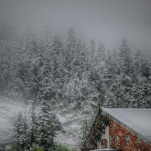 ここで雪だなんて