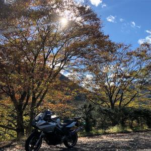 旅日記44紅葉ぽい妙義山旅