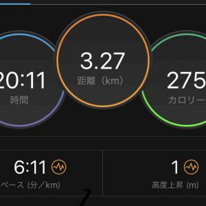 4/21(日)佐渡トキマラソン2019(スタートまで)