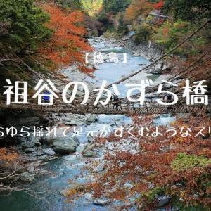 【徳島】ゆらゆら揺れて足元がすくむようなスリル『祖谷のかずら橋』