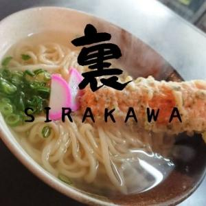 【讃岐うどん】創作うどんが楽しめる『裏SIRAKAWA』