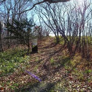 2018年11月13日「春採公園」鶴ヶ岱チャランケ砦跡