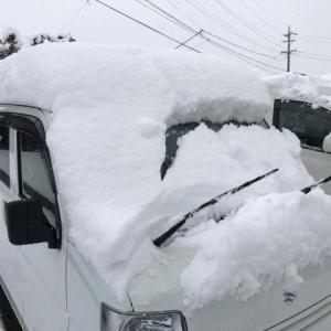 積雪!ストレス発散!!(笑)