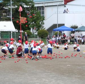 小学校の運動会(*^▽^*)