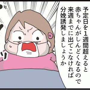 マルコの出産①~なかなか出てこないお腹の子~(妻の高齢妊娠編92)