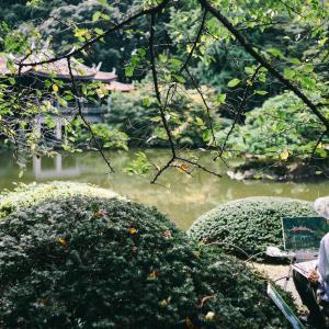 休日何しよう?四谷・新宿エリアでおすすめ遊びスポット