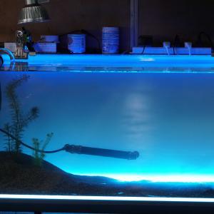90水槽の自作ライトスクリーン。