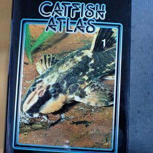 Catfish Atlasという洋書。