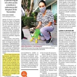 【話題】メキシコメキシティ 3歳のパグが医療チームを激励