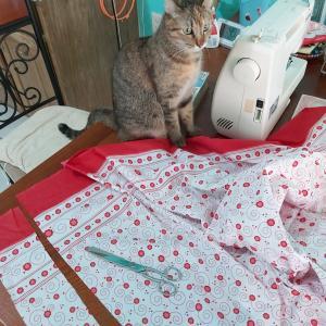 猫用 シュシュ首輪