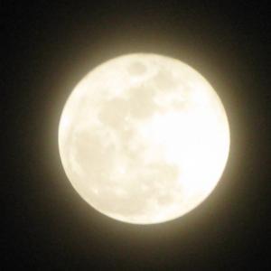 【満月】あなたはもっと輝ける~直感を大切に自分の意志を尊重する