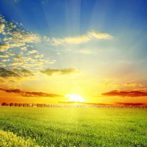 感謝とともに心を安定させて前向きな未来へのビジョンを描こう