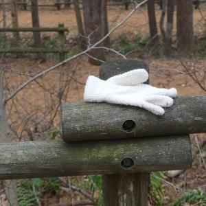 善意のはやにえ(手袋)