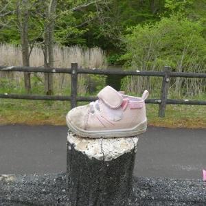 善意のはやにえ(幼児の靴)