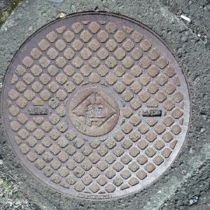 北海道庁のマンホール