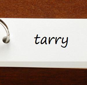 英検1級レベルの単語と例文 — tarry