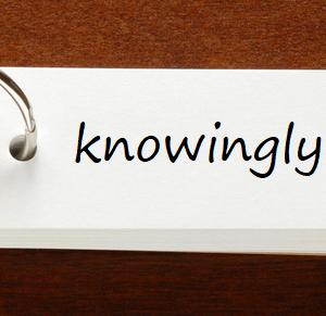 英検1級レベルの単語と例文 — knowingly