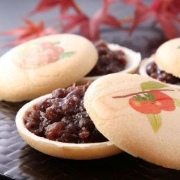 ◇秋の京菓子十撰◇ 四季の情景を描写した美しい和菓子「四季最中」【高野屋貞広】