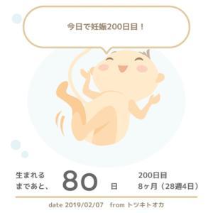 妊娠200日目 トツキトオカアプリが可愛い