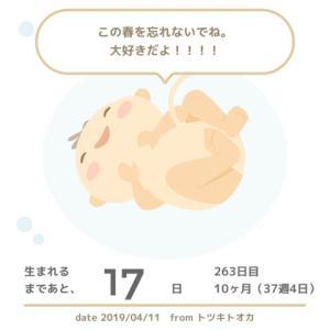 37W4D 妊婦健診11/NST検査