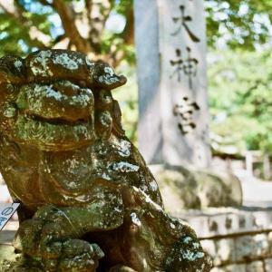 船橋大神宮から学ぶ(上)・rolleiflex sl35e w rolleiplanar 1.4/50 - lomo CN 100