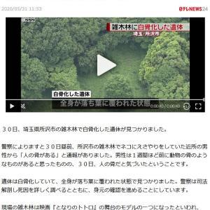 トトロの森 (・ε・`  )