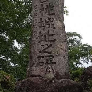 沼田城~名胡桃城 ヾ(*ΦωΦ)ノ ヒャッホゥ