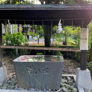 屋久島2020 梅雨明けダイビング(2) 2020/7/29(水)