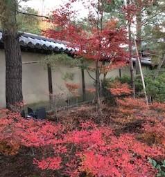 ★京都・滋賀の旅 #5 完★