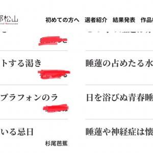 俳句ポスト365 中級並選