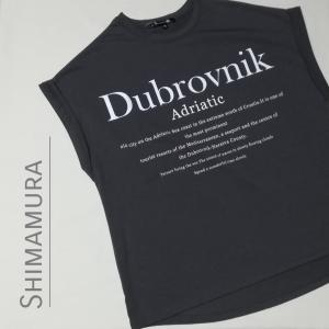 【しまむら】ロゴプリントドルマンTシャツ チャコールも手に入れたぞう!