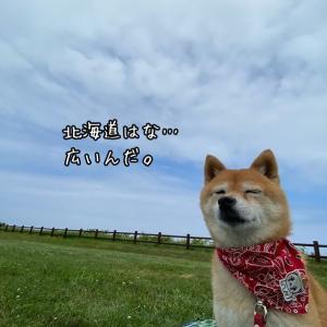 札幌から道南への異動がどんなかというと。