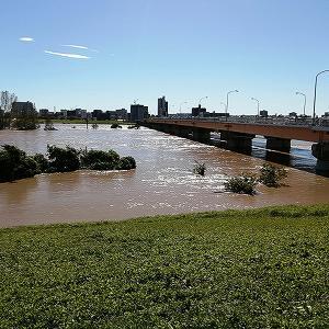 台風後の荒川、芝川沿いの状況