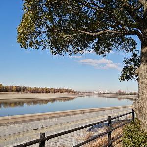 彩湖、秋ヶ瀬公園など