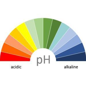 酸性・アルカリ性・中性とは? pH、液性とは? ペーハーなの? アルカリ食品とは何?